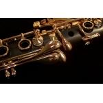 BACKUN - Klarnet B - PROTEGE Gold