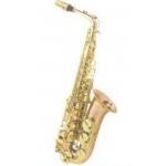 ARNOLDS & SONS - Saksofon Alt - AAS-100G