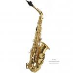 TREVOR JAMES - Saksofon Alt - SR 374 SR-KK